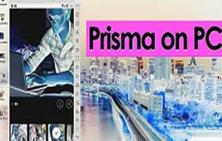 How To Run Prisma On Windows And Mac