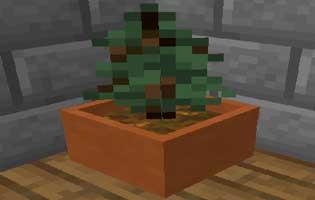 Botany Trees Mod 1.16.4/1.15.2