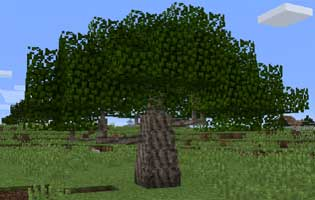 Dynamic Trees – Forestry Mod 1.12.2